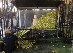 1 ton of lemons rig, mechanical rigs Cape Town