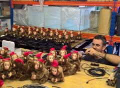 Noisy monkeys, Electronics